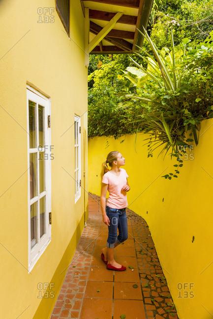 Caucasian girl admiring foliage above yellow wall