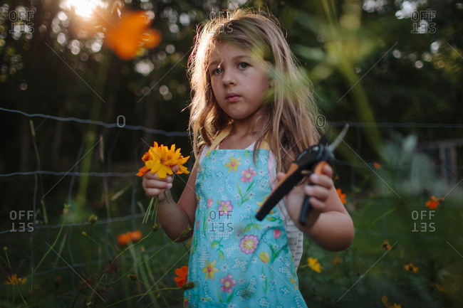 Girl with garden clippers cutting flowers at dusk