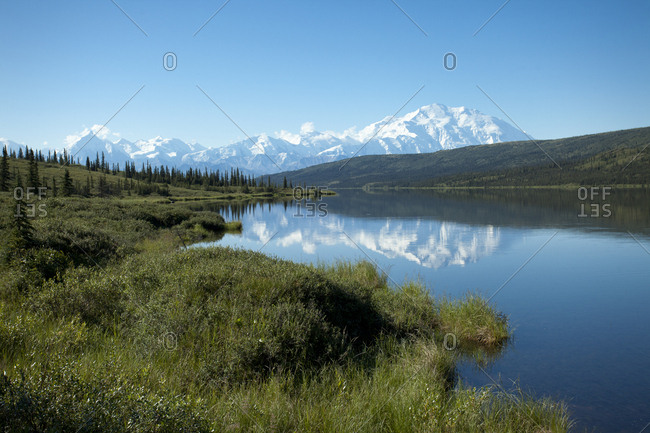 Denali National Park with landscape reflection in water