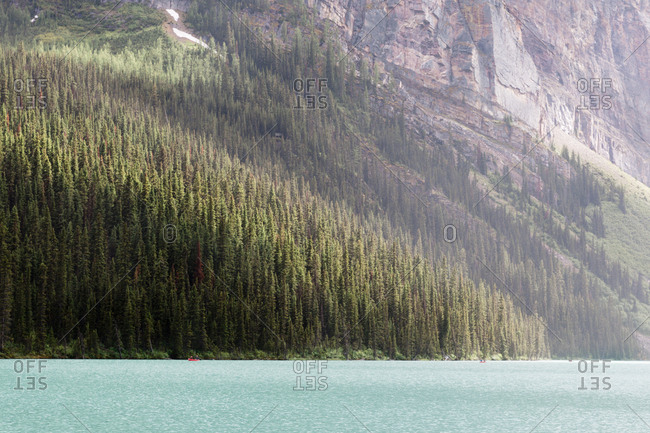 Dense forest on Lake Louise in Alberta, Canada
