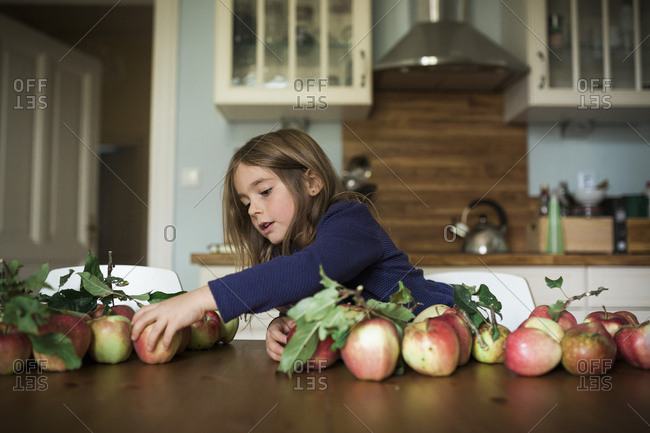 Girl sorting freshly picked apples on table