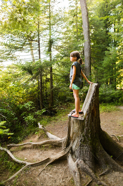 Girl on a stump in a forest
