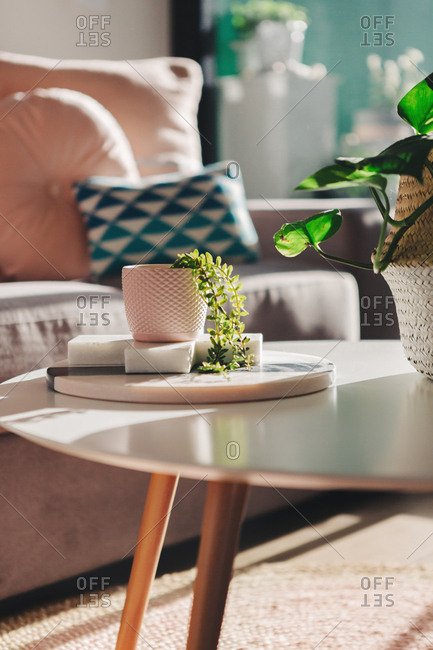 Stylish living room details with in late afternoon sunlight