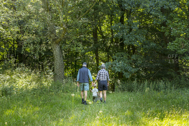 Grandparents walking with grandson (2-3) in forest