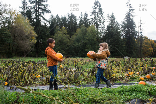 Two young girls picking pumpkins in a pumpkin patch