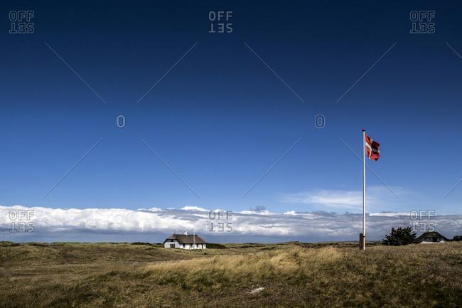 Denmark, Fjerritslev - June 21, 2014: Beautiful heath landscape close to the Thorup Beach in Northern Jutland