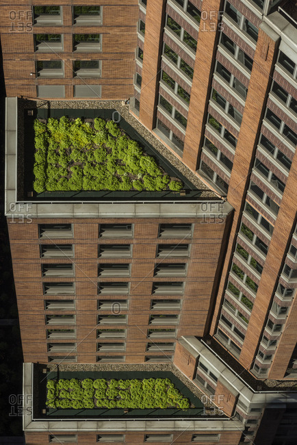 A rooftop green space in New York City