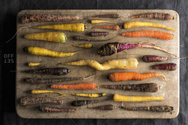 An overhead shot of an array of rainbow carrots in many colors and shapes all with a fresh from the farm, rustic look