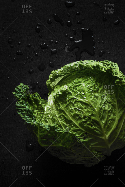 A fresh picked head of vibrant green cabbage with water droplets on a dark surface