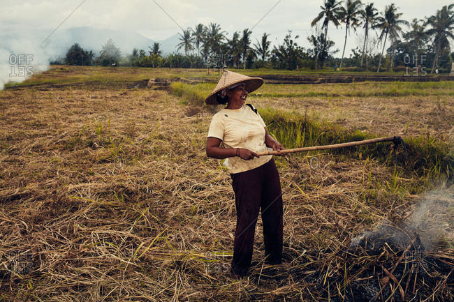 Bali, Indonesia - January 15, 2017: A woman working in a field laughing