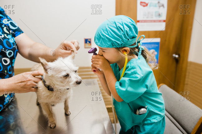 Little girl pretending to give a small dog a shot at the vet