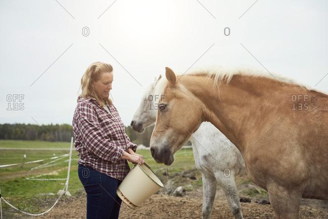 Female farmer feeding horse on field