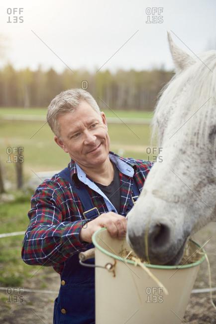 Farmer feeding horse on field