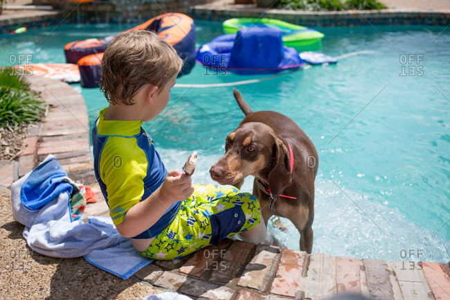 Dog trying to get boy's ice cream in a swimming pool
