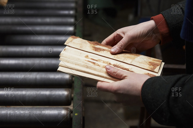 Person holding freshly cut pieces of wood