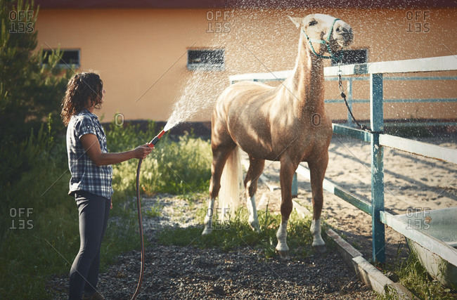 Woman washing and refreshing her horse
