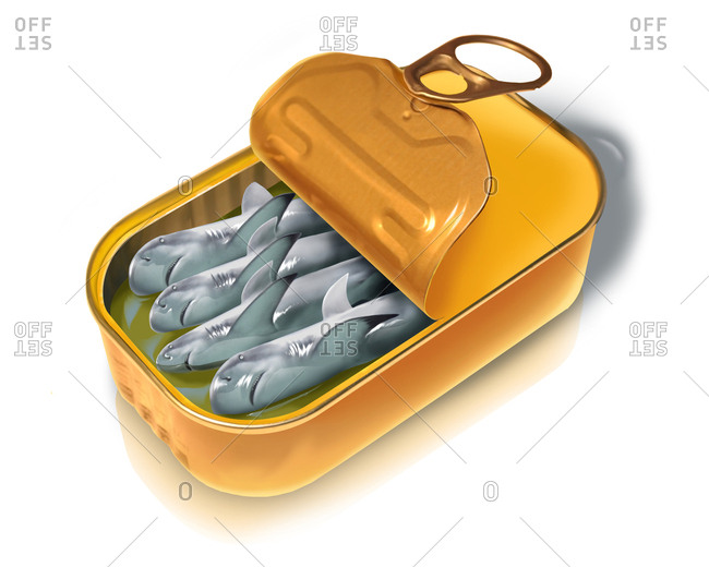 Illustration of open canned fish