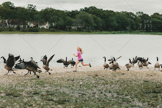 Girl running with geese by lake