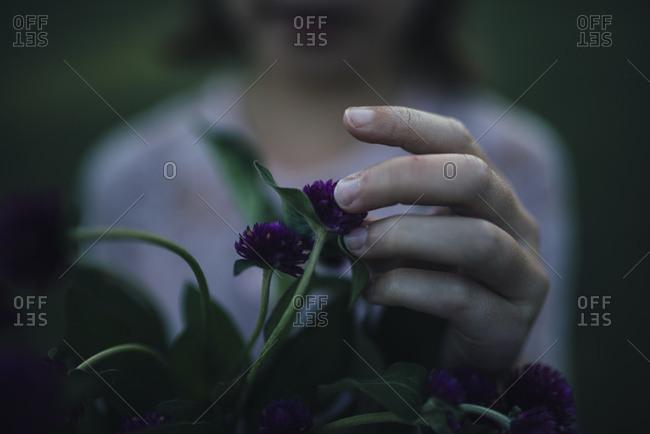 Child touching purple flower blossom