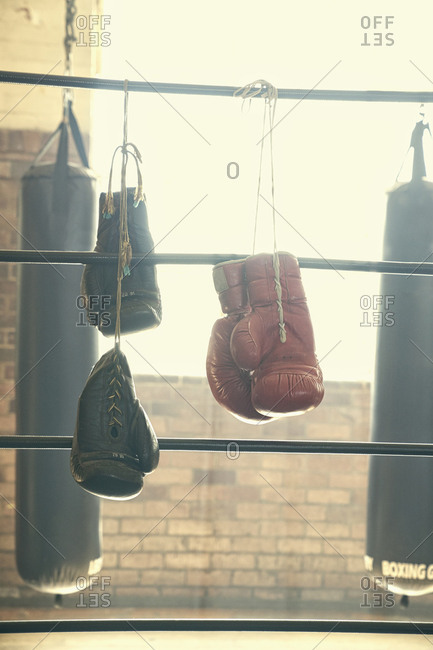 Punching bags and boxing gloves in empty gymnasium