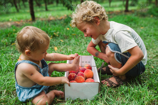 Two kids looking at box of fresh picked peaches