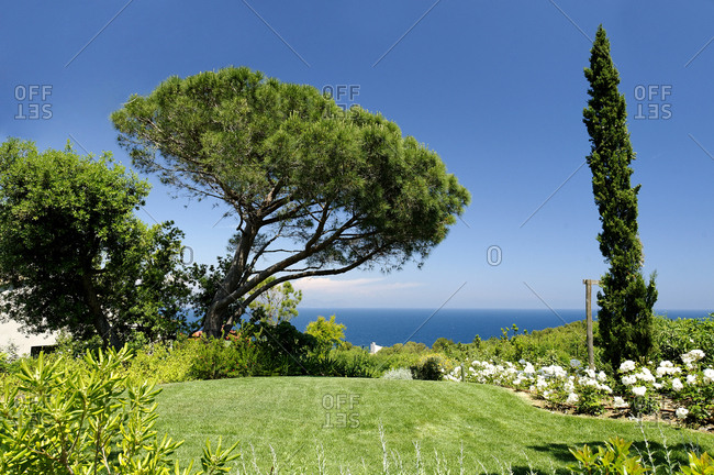 Lawn and garden in landscaped yard with a view of the sea