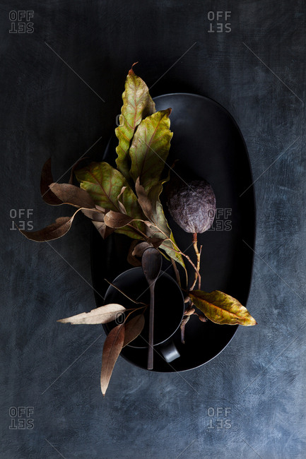 Ceramic bowl with dark avocado and leaves from overhead