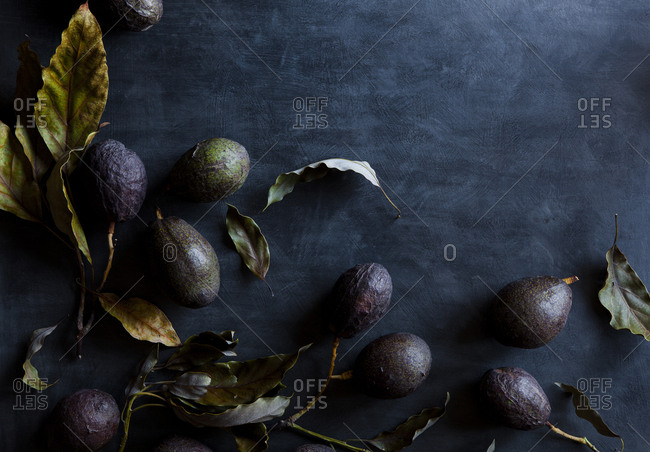 Still life with dried leaves and avocados