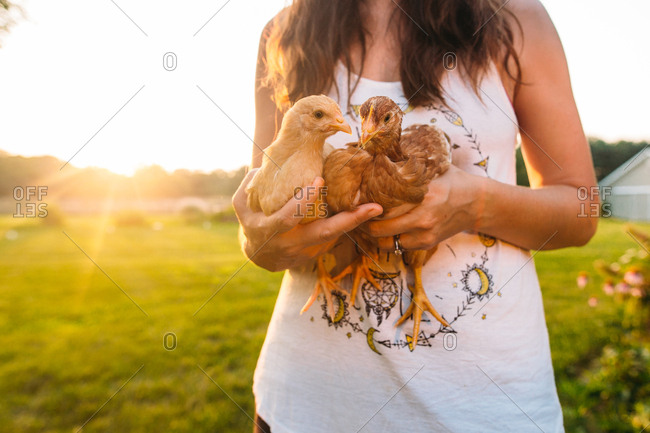 Woman holding chickens in a field
