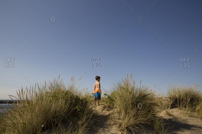 Boy standing among coastal dunes