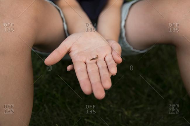 Boy holding slug in hand