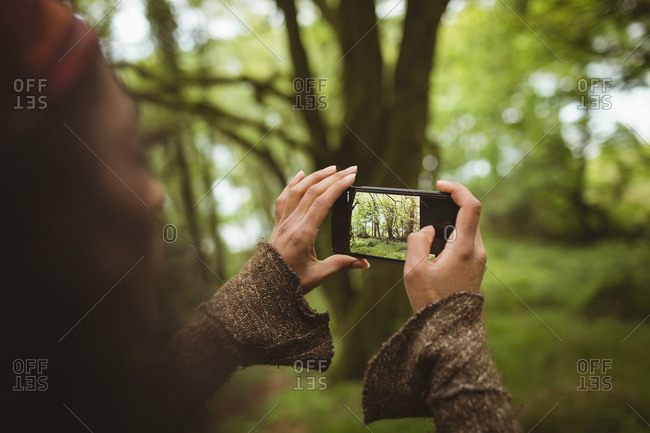 Cropped image of woman photographing from mobile phone at forest