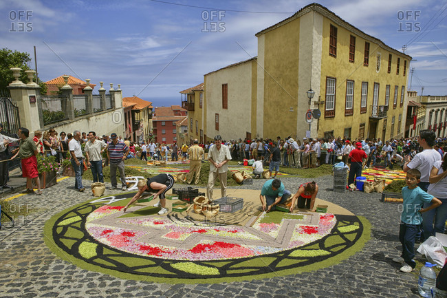 May 29, 2015: Decorating The Street With Carpet Of Flowers During Corpus Christi Celebrations In La Orotava On Tenerife, Santa Cruz De Tenerife City, Spain