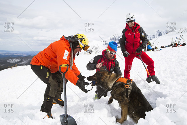 December 30, 2015: A Mountain Rescue Team Practices With Avalanche Dog in Poland