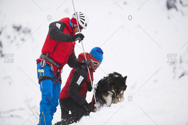 January 3, 2016: A Mountain Rescue Team Working With An Avalanche Dog On Snowy Landscape In Poland
