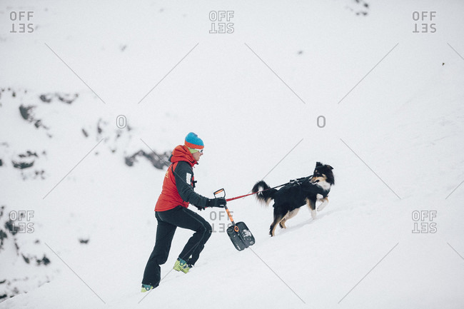 January 3, 2016: A Mountain Rescuer With An Avalanche Dog In Poland
