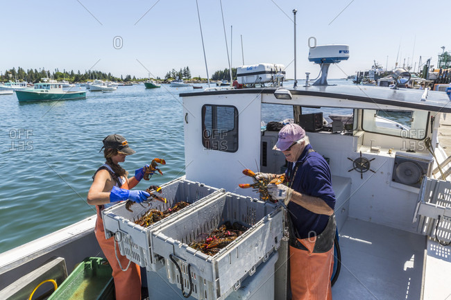 July 11, 2016: Captain And Stern Woman At The Vinalhaven Fishermen's Co-op In Vinalhaven, Maine