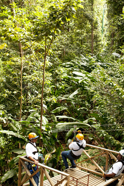 Saint Lucia - March 5, 2011: People zip lining in jungle