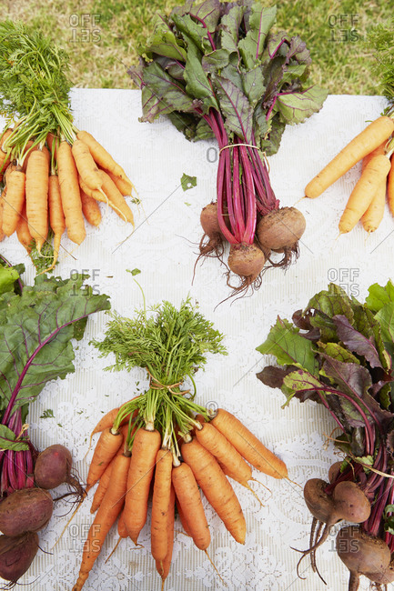 Fresh beets and carrots in Bermuda