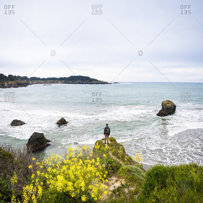 Rear view of man standing on promontory on coastline and looking at view of sea, Mendocino Headlands State Park, Mendocino County, California, USA