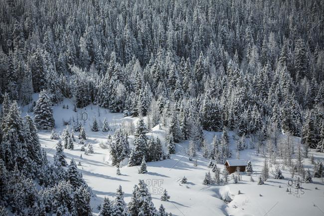 Mount Assiniboine in snow, British Columbia, Canada