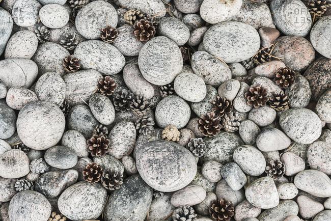 Grey pebbles and pine cones