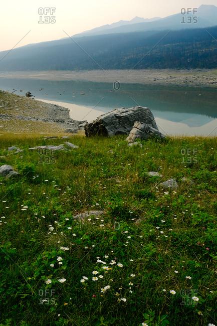 Field by a stream near mountain