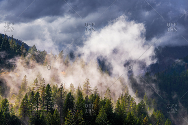 Sunlight hitting fog as a storm passes over the feather river canyon in northern California