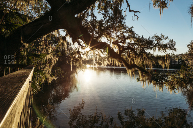 Sun setting over St. John's River in Orlando, Florida