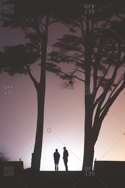 Silhouette of two people standing under trees