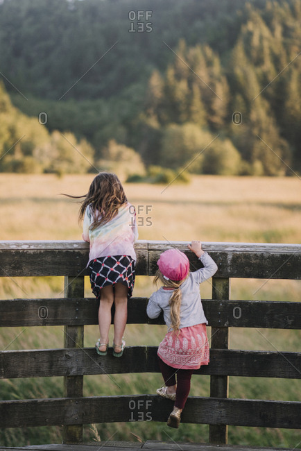 Rear view of sisters climbing on wooden fence