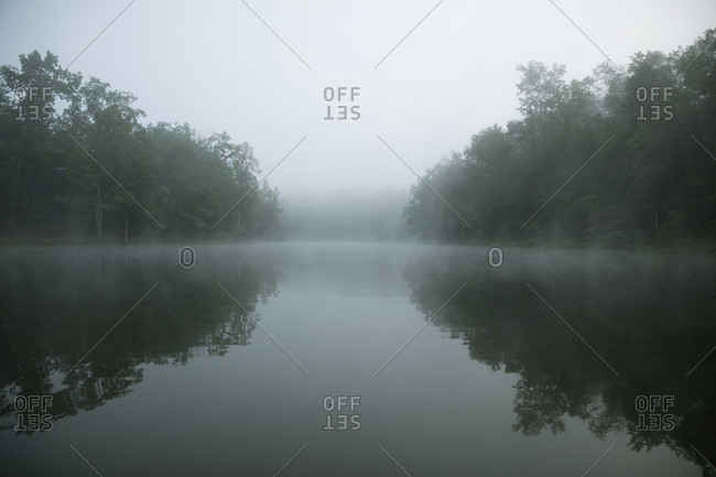 Symmetry view of trees by lake against sky during foggy weather