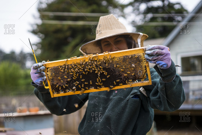 Female beekeeper inspecting beehive frame at farm