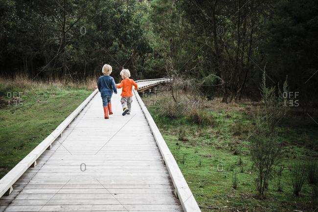 Rear view of brothers walking on boardwalk at field
